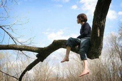boy-tree