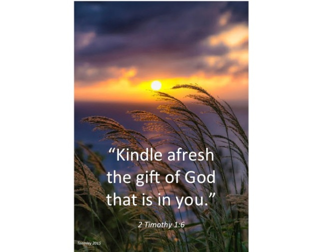 Kindle Afresh