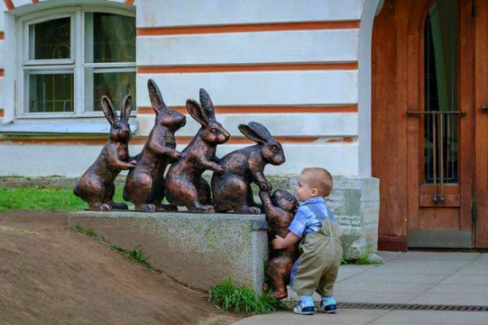 Boy helps rabbits