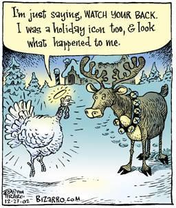Turkey-Reindeer