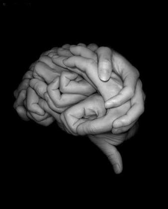 Brains are handy things