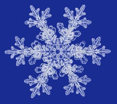 """""""Snowflakes"""" micro-engraving series"""