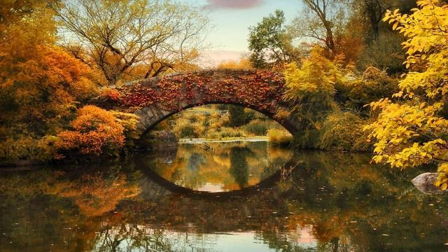 autumn-bridge