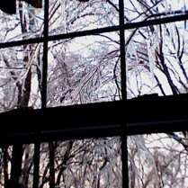 The view from my office window when an ice storm struck: Suddenly the world was made of glass.