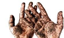 soil-hands