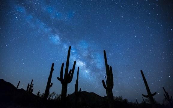 night-sky-full-of-stars-in-the-desert