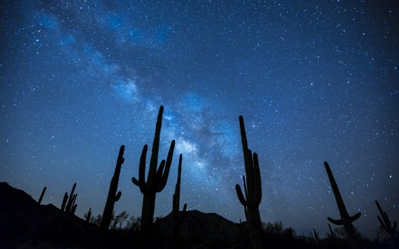 night-sky-full-of-stars-in-the-desert