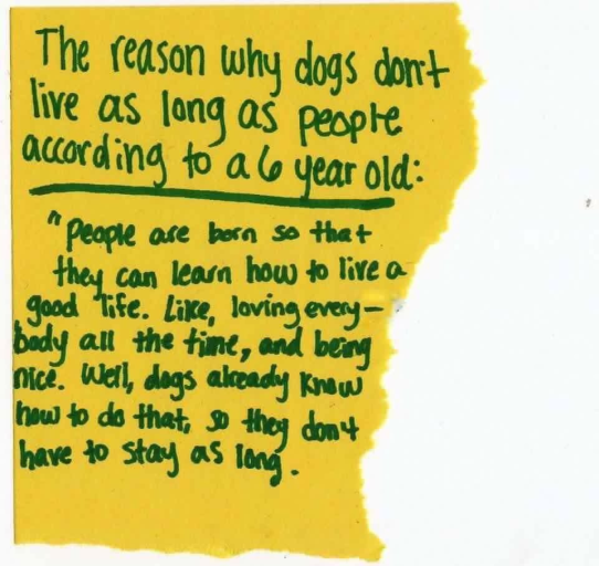 Dogs-don't live as long