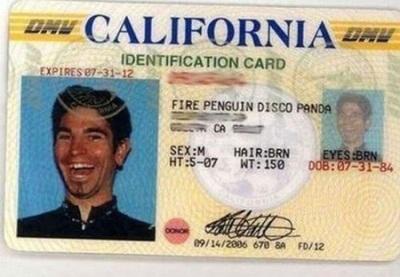 fire-penguin-disco-panda