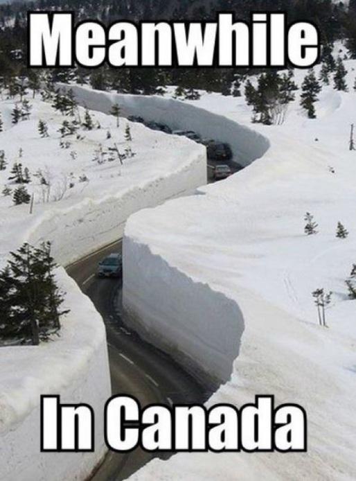 Finniest-Snow-Memes-Ever2