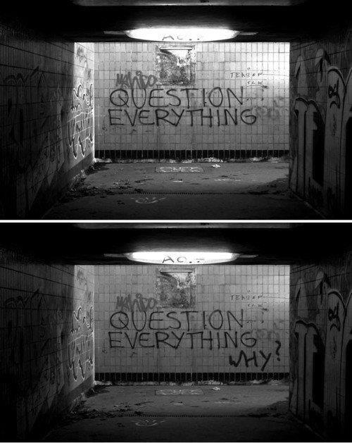 Question Everything quip