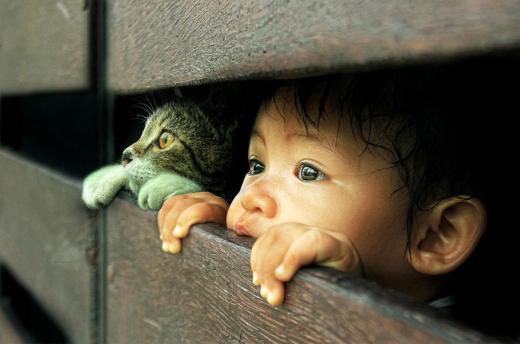cat-and-child