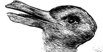 duckrabbitillusionfea