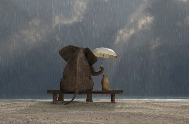 Kindness always carries an umbrella.