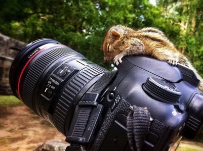I'm ready for my close-up.