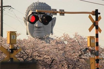 Buddha Shades