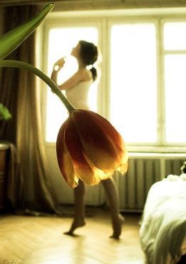 Ballet, Pt 3 (Two-legged Tulip)