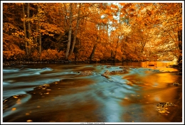 Autumnal river
