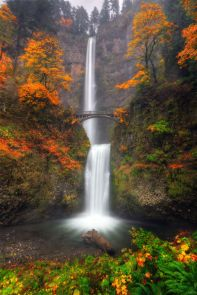 Multnomah Fall, October