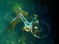 A submerged bicycle (Dwight Pinkley)