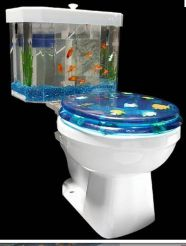 What happens to the fish when I flush?