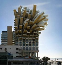 French Fry building