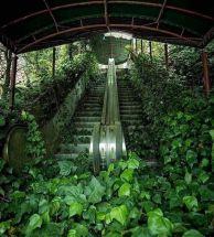 Overtaken escalator