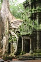 Prom Temple, Cambodia