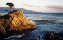17 Mile Drive, California (Where my wife and I got engaged)