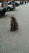 Kid as porcupine