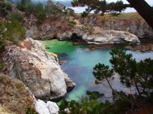Point Lobos, Monterey, California (my wife and I honeymooned here)