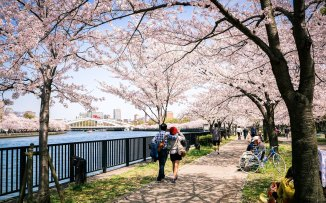 Tokyo in the spring