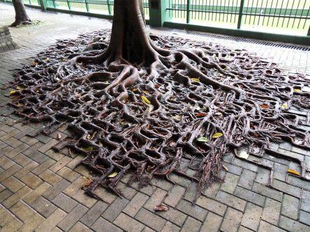 Jigsaw Tree