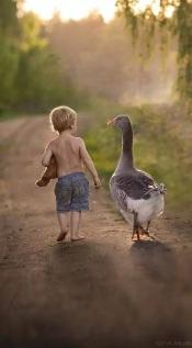 Take long walks together.