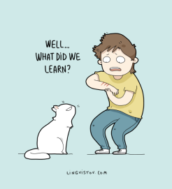 Cats are excellent teachers.