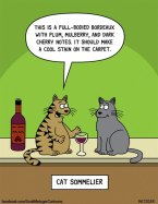 Cats are very sophisticated.