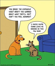 Dogs and cats do not observe the same code of ethics (Part Two).