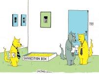 How cats handle commands.
