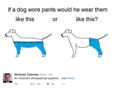 The reason dogs don't wear clothing.