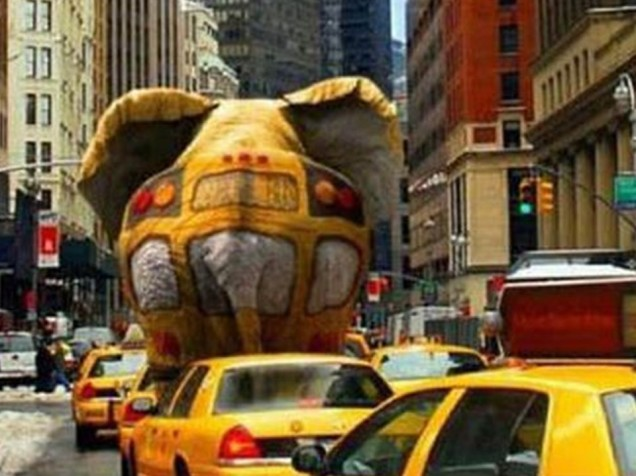 Elephant disguised as bus