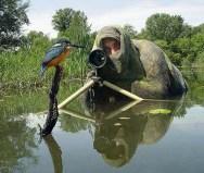 Funny-Camouflage-Bird-Photoshoot-Image