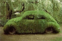 Funny-Camouflage-Grass-Car-Image
