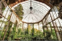Glasshouse (Stefan Baumann)