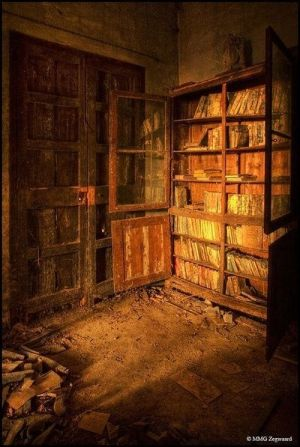 Ruins of an old abandoned library.
