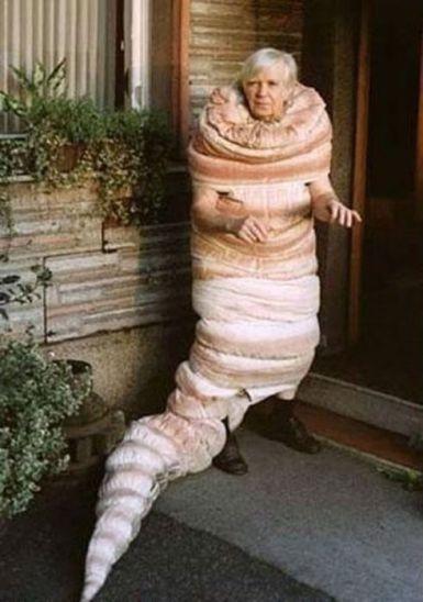 """Costume? What costume?"""