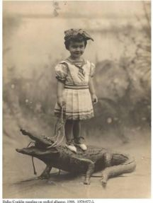 Whereas boys were typically photographed smoking next to chickend, girls were usually photgraphed standing on alligators.