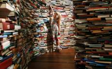 aMAZEme (Marcos Saboya and Gualter Pupo), a maze constructed from 250,000 books