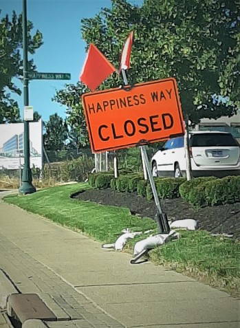 Happiness Way Closed 6-12-20