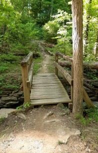 Bridge, Mt. Airy Forest
