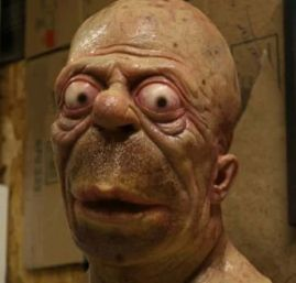 Real life Homer Simpson